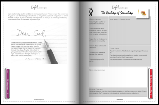 life for singles facilitator's guide/workbook, the reality of sexuality section complete with facilitator's notes and preparation pages. Christian course